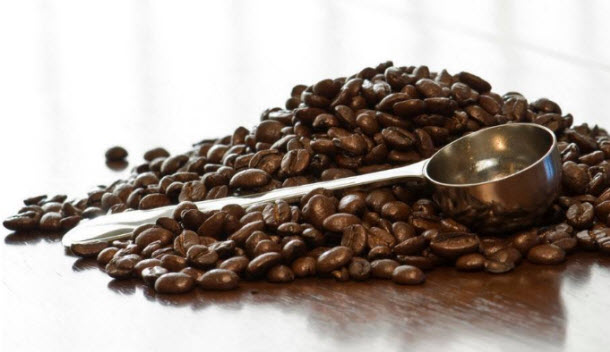 Coffee Bean3