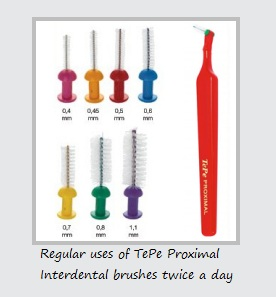 Tepe Proximal Brushes