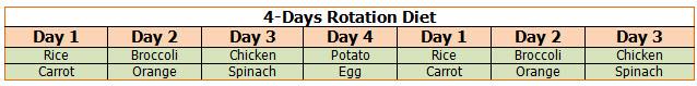 4 Day Rotation
