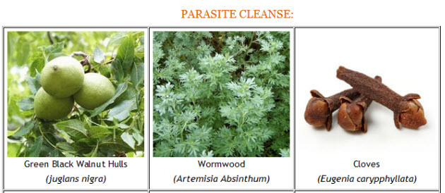 Parasite Cleanse Pic